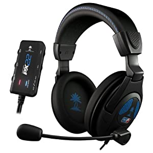 P Turtle Beach Share