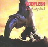 Crush My Soul Godflesh