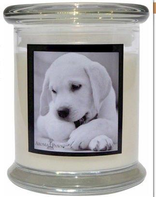 Aroma Paws 308 Breed Candle 12 Oz. Jar - Labrador
