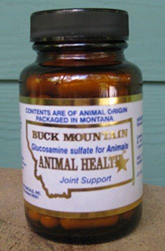 Alternative To Glucosamine