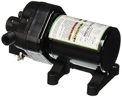 WFCO (PDS3B-130-1260E) RV Fresh Water Pump