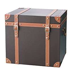 Faux-Leather Trunk - Dark Brown : Target