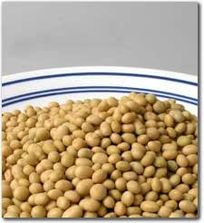 25 Lbs Organic Soybeans - Certified Organic Soy Beans for Soymilk, Tofu, Food Storage & more.