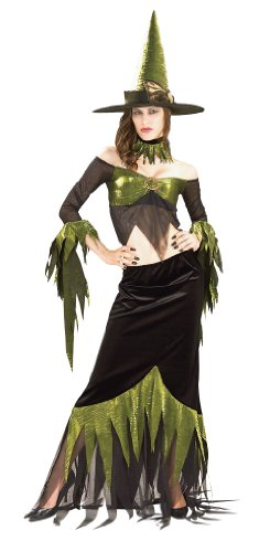 Deluxe Wicked Witch Halloween Costume for Fun