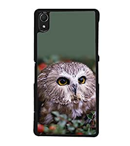 printtech Cute Bird Owl Back Case Cover for Sony Xperia Z3 , Sony Xperia Z3 D6653 D6603
