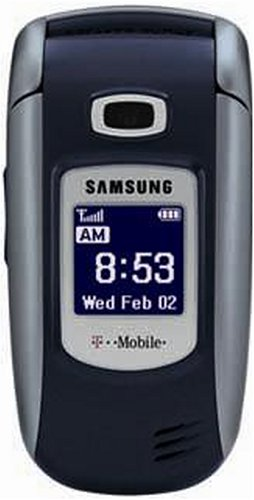 Cell Phone: Samsung t319 TMO to Go