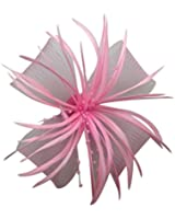 Womens Chrysanthemum Style Flower with Feather Clip Fascinator