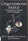 Organizational Justice: The Search for Fairness in the Workplace (Issues in Organization and Management Series)