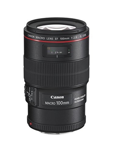 canon-ef-100mm-f28l-macro-is-usm-lens
