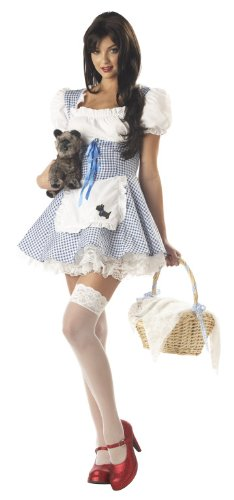 Adult Dorothy Costume Size Medium (8-10)