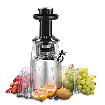 OBREKO Slow Masticating Juicer (200W DC Motor, 65 RPM, Reverse Function - Yields more Juice), Spraying Silver