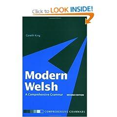 Modern Welsh a Comprehensive Grammar h33t Bitfastertorrent preview 0