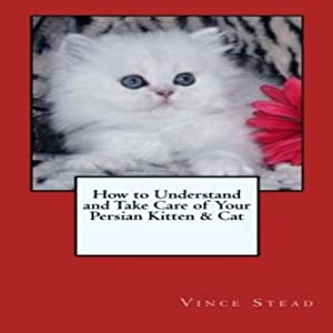 How to Understand and Take Care of Your Persian Kitten & Cat | [Vince Stead]