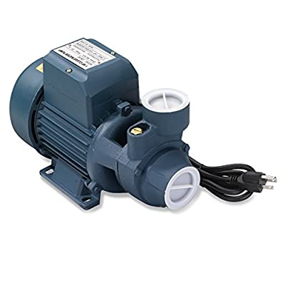 Neiko 50639 Clear Water Pump for Pools, Ponds and Irrigation Systems  Centrifugal with 1 HP Motor from Ridgerock Tools Inc.