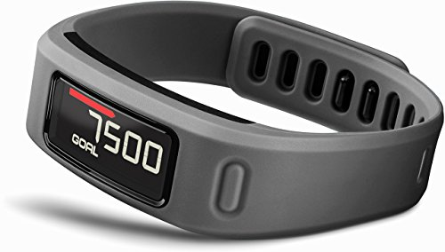 Garmin vivofit Fitness Band - Slate