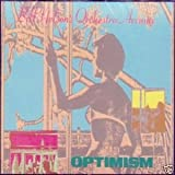 Bill Nelson's Orchestra Arcana : Optimism