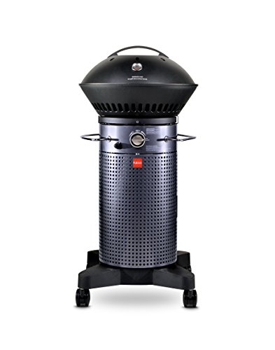 Fuego Element 2016 F21C Model Gas Grill
