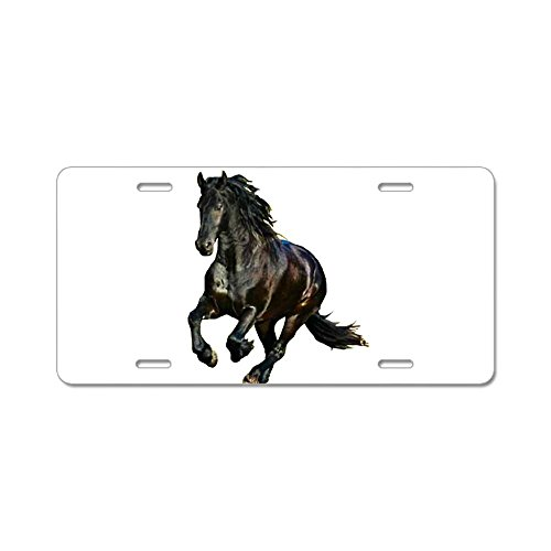 CafePress - Black Stallion Horse Aluminum License Plate - Aluminum License Plate, Front License Plate, Vanity Tag