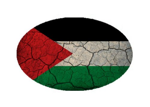 Palestine Flag Crackled Design Oval Magnet - Great for Indoors or Outdoors on Vehicles
