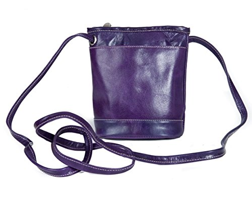 david-king-co-florentine-top-zip-mini-bag-3512-blue-purple-one-size