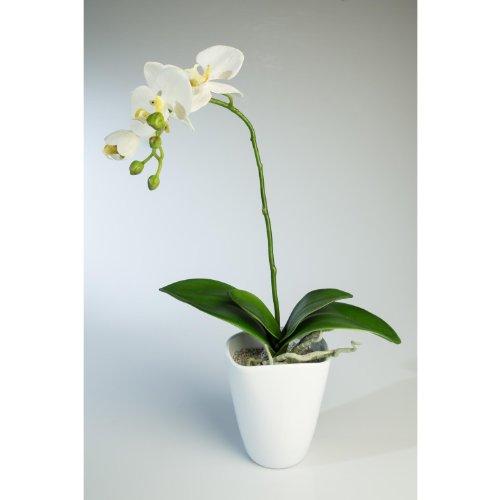 orquidea-phalaenopsis-artificial-lahna-en-maceta-blanco-45-cm-planta-decorativa-flores-sinteticas-ar