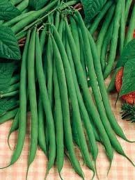 French Pole Beans