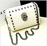 Shopinthebox 2013 new European and American fashion Bag mail spring summer retro skull head rivet chain Shoulder Messenger small female bag