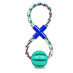 Dog Toy [Rope Ball 2 in 1] Jakpopin Dog Fetch Ball Toy Bite Resistant Chew Toys for Dogs Non-Toxic Bouncy Rubber Ball with Durable Rope for Dog Training Chewing Dog Suppliers Mint
