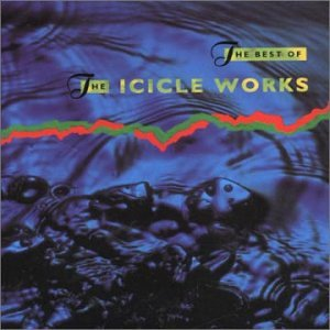 ICICLE WORKS - Best of the Icicle Works - Zortam Music