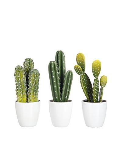 J-LINE Set Planta Artificial 3 Uds. Cactus
