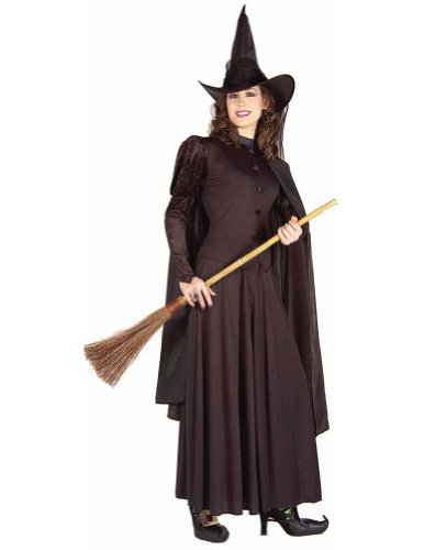Classic Witch Costume Adult Womens Costume