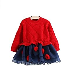 TheTickleToe Kids Girls Red Blue Sweater Dress with Floral Applique Party Birthday Winter 3-4 Years