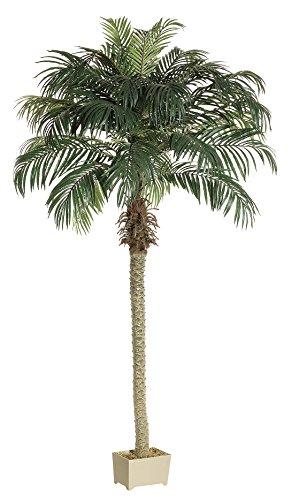 Silk Plants Direct Phoenix Palm Tree (Pack Of 2)