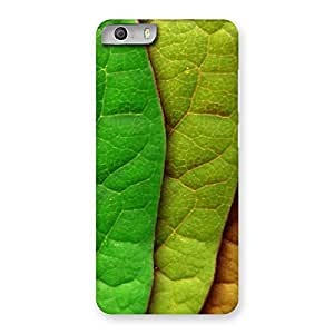 Pattern Leaf Back Case Cover for Micromax Canvas Knight 2