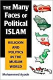 img - for The Many Faces of Political Islam Publisher: University of Michigan Press book / textbook / text book
