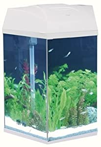 hexagonal fish tank 21 litre white pet supplies
