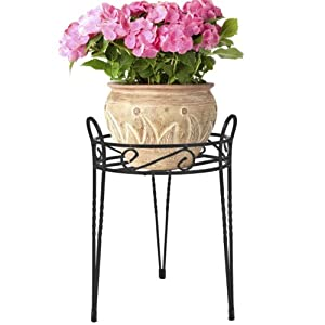 CobraCo Canterbury 15-Inch Black Scroll Top Plant Stand SCBPS1015-B