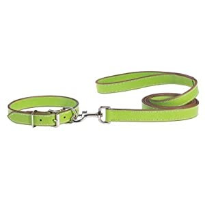 Casual Canine Flat Leather Dog Collar, 22-26-Inch, Parrot Green