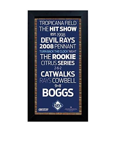 Steiner Sports Memorabilia Framed Tampa Bay Rays Subway Sign