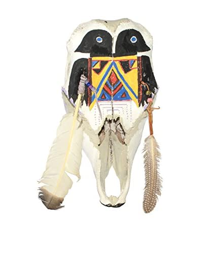 Uptown Down Found Native American Ceremonial Cow Skull