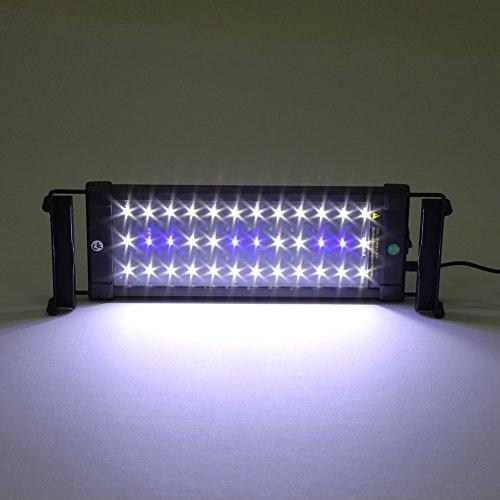 MVPower Aquarium Beleuchtung LED Aquariumlicht Aquariumleuchten Aquariumlampen Aufsetzleuchte 30cm weiß+blau (30cm)