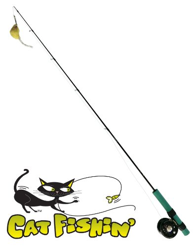 Cat fishin 39 the toy with lasting allure the ultimate for Cat fishing pole