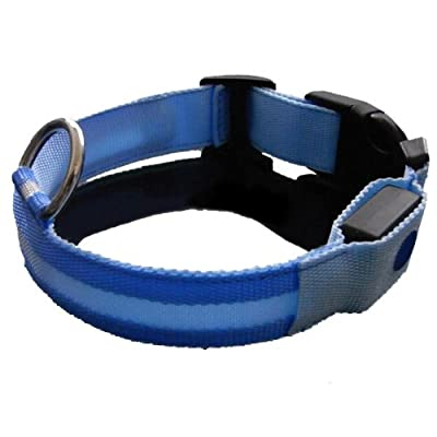 Safety Collar for Dogs, Flashing LED Lights up the Collar, See Where Your Dog Is in the Dark! Luminous Flashing Safety Dog Collar Keeps Your Dog