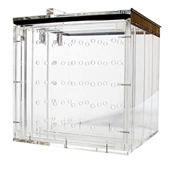 Nalgene 5317 Acrylic Desiccator Cabinet with Stainless Steel Latches and Hinge, 305mm Width x 178mm Height x 305mm Depth, Two Shelves