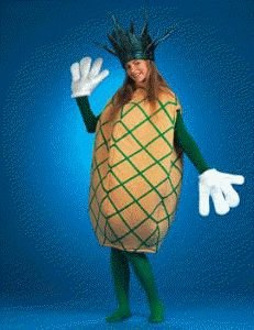 Fruit (Pineapple) Adult Halloween Costume Size Standard