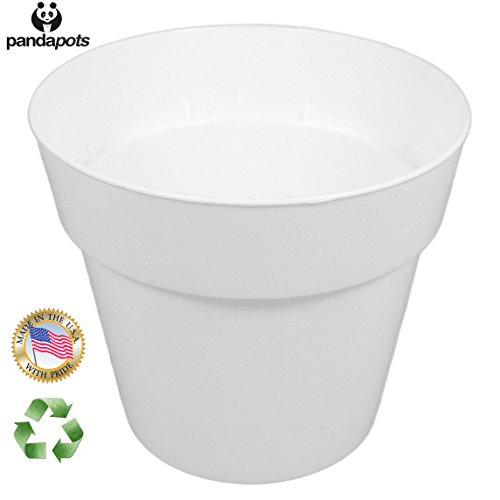 "50 Plant Pots - 3 Inch Diameter - Perfect for Succulents - 100% Recycled Plastic - Made in USA - Strong, Reusable - By Panda Potsâ""¢"