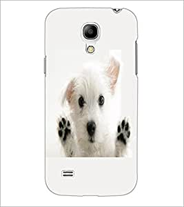PrintDhaba Puppy D-2228 Back Case Cover for SAMSUNG GALAXY S4 MINI (Multi-Coloured)