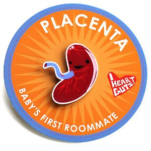 Placenta Lapel Pin Baby's First Roommate I Heart Guts