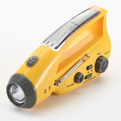 Buy Torch Light Energy Now!