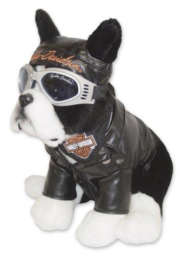 Kids Preferred Harley-Davidson: Boston Terrier, Sprocket Special Edition front-1031697